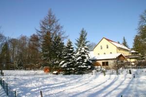 9.Winter